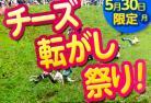 【5月30日限定】生で見たい!グロスターのチーズ転がし祭り観戦ツアー