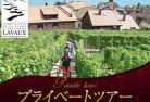 【プライベートツアー】 唯一の公式日本人ガイド・田口貴秀と行く 世界遺産ラヴォーの村めぐり半日観光 ~ワイン試飲付