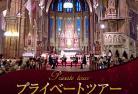 【プライベートツアー】 往復送迎+日本語アシスタント付き マーチャーシュ教会コンサート