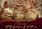 【プライベートツアー】 専用車で行く ヨーロッパ最大!ポストイナ鍾乳洞と小さな港町ピラン 1日観光 (英語ガイド)