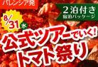 [みゅう]トマト祭り トマティーナ・オフィシャルツアー【宿泊パッケージ 2泊付き】