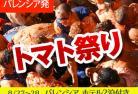 【8月27日限定】[みゅう]トマト祭り トマティーナ ホテル2泊付きプラン ~20組限定~