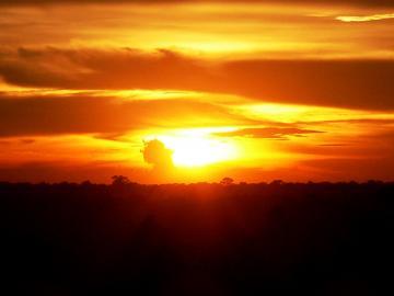 専用車で観光!祇園精舎アンコールワットと夕日に映えるアンコールを見る アンコールワットと夕日鑑賞 半日ツアー
