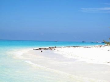 高い透明度と美しい珊瑚礁が自慢の島へ!! コタキナバル発・マンタナニ島シュノーケリングまたはダイビング