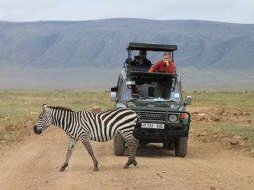 アフリカの大自然を訪れる タンザニア3泊4日の旅 -ンゴロンゴロ自然保護区・マニヤーラ湖 国立公園・タランギーレ 国立公園