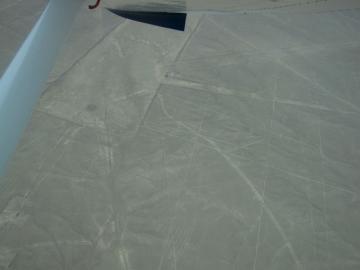 ナスカの地上絵を見る!遊覧飛行~リマからの送迎付き