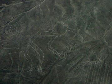 ナスカの地上絵遊覧飛行 ナスカエキスパート [ナスカ空港発 / 約45分間]