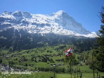 S28 優雅なスイスの夏休み8日間・パッケージ(7泊8日)
