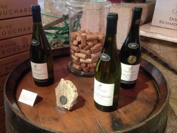 ワイン農家で昼食! 銘酒白ワインの里シャブリと世界遺産ヴェズレー 1日観光