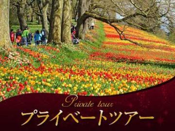 【プライベートツアー】 日本語ガイドと列車&路線バスで行く マイナウ島、ボーデン湖、コンスタンツ1日観光 ボーデン湖クルーズ付き