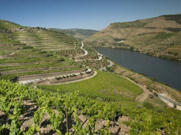 ポートワインの故郷 世界遺産ドウロ渓谷1日観光 昼食付き