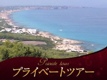 【プライベートツアー】専用車で巡る 半日フォルメンテーラ島