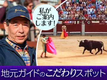 <<当サイト限定>>闘牛熱狂ファンの番長(ばんちょう)が案内する闘牛を楽しもう