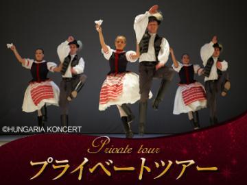 【プライベートツアー】 往復送迎+日本語アシスタント付き 民族舞踊パフォーマンス鑑賞