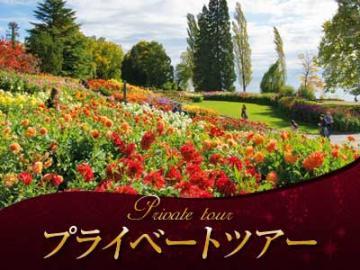 【プライベートツアー】 日本語ガイドと列車&路線バスで行く ラインの滝、シュタイン・アム・ラインとマイナウ島1日観光