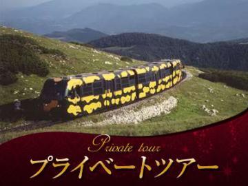 【プライベートツアー】オーストリア・アルプス最東端 シュネーベルク~サラマンダー模様の登山列車往復乗車券付