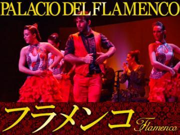 フラメンコ・ショー PALACIO DEL FLAMENCO (パラシオ・デル・フラメンコ)