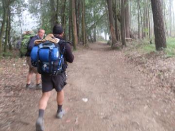 【プライベートツアー】世界遺産サンティアゴ巡礼の道を歩こう 【6泊7日】