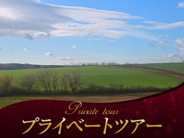【プライベートツアー】 日本語アシスタントと専用車で行く モラヴィアの大草原と世界遺産レドニツェ、ヴァルティツェのワイナリー 1日観光(昼食付)