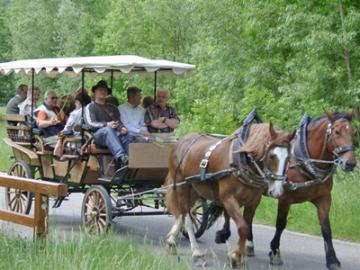 タウバー渓谷を馬車で散策!