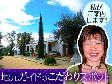 <<当サイト限定>> オリーブオイル・エキスパートの田中さんがご案内    オリーブ生産地を訪ねるツアー