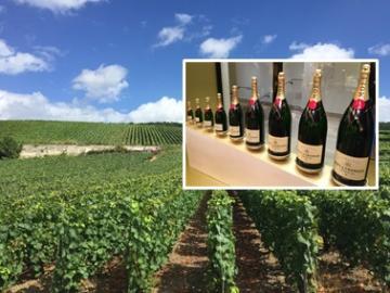 シャンパン農家で昼食 ! 世界遺産ランスと老舗シャンパンセラー 1日観光