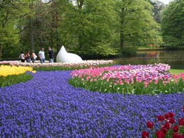 【2019年3月21日~5月19日限定】欲張りアムステルダム♪ キューケンホフ&美術館ツアー 日本語ガイドと送迎付き