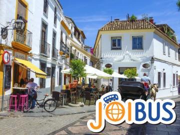 【JOIBUS】マドリッドからセビリヤへのアンダルシア2日間周遊(マドリッドからコルドバはAVE利用)