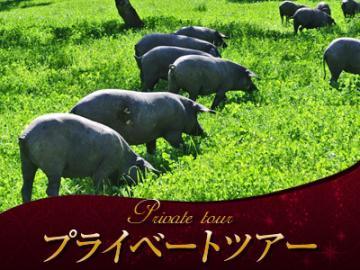 【プライベートツアー】 日本語アシスタントと専用車で行く イベリコ豚の里 ハブーゴ1日観光(昼食付) ~心と体が癒されるアンダルシアの秘境を訪ねる~