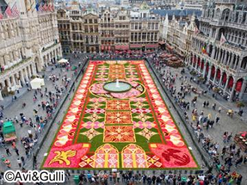【8月15日限定】デラックスバスで行く ベルギー・ブリュッセルのフラワーカーペット
