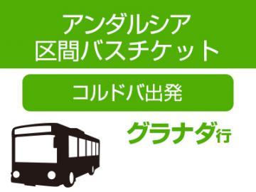 アンダルシア区間バス(コルドバ発グラナダ行 中・長距離バス)