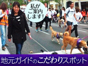 <<当サイト限定>>わんちゃん大好き幸子(さちこ)さんやその仲間達とわんちゃんマラソンの応援に行こう!