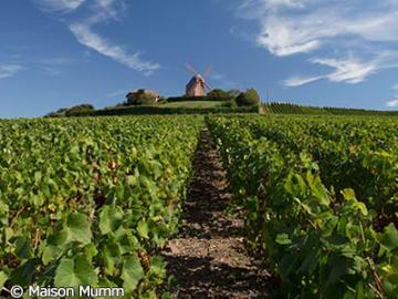 【7月~9月限定】シャンパーニュの町エペルネーとランス パリ発ランス着