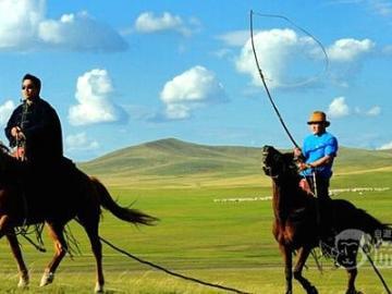 【満喫中国旅行の1ページに!】内モンゴル「パオに泊まる」大草原遊牧民旅行ツアー1泊2日