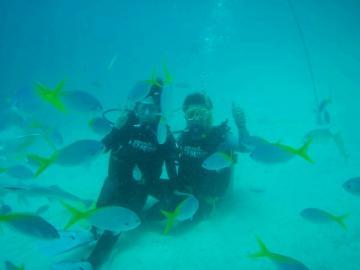 ライセンス不要!日本語ガイド確約 パラオ、ロックアイランドのビーチで体験ダイビング