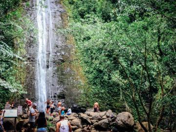 ネイチャー&ユー・マノアの滝ハイキング