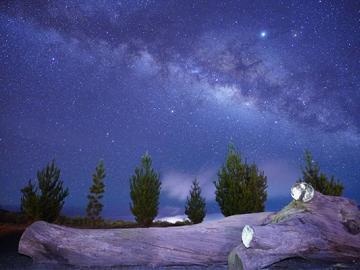 ネイチャースクール 夕陽と星空観測ツアー