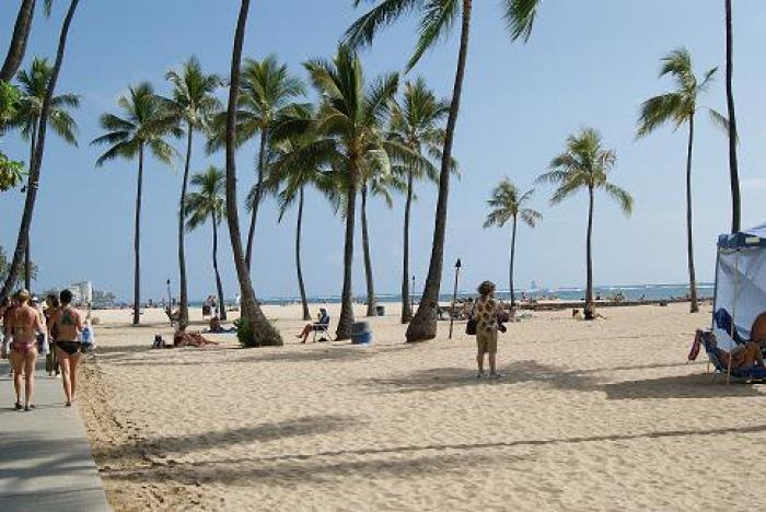 ホノルルおすすめ散歩コースの写真|ピックアップ! ハワイ おすすめ情報情報