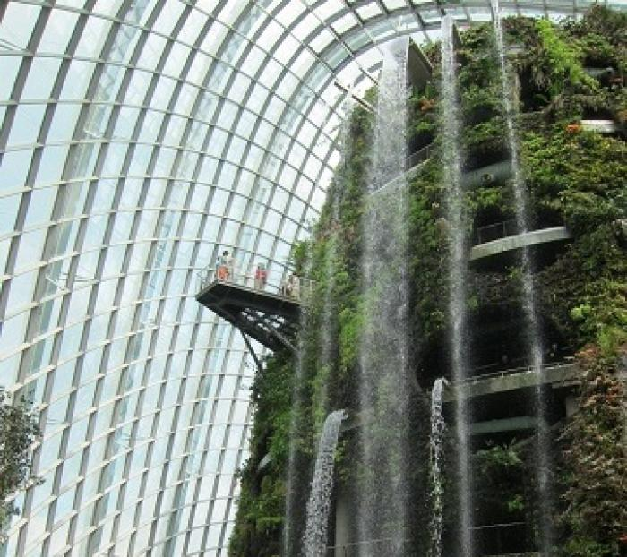 シンガポールおすすめ植物園の写真|ピックアップ! シンガポール 観光地情報情報